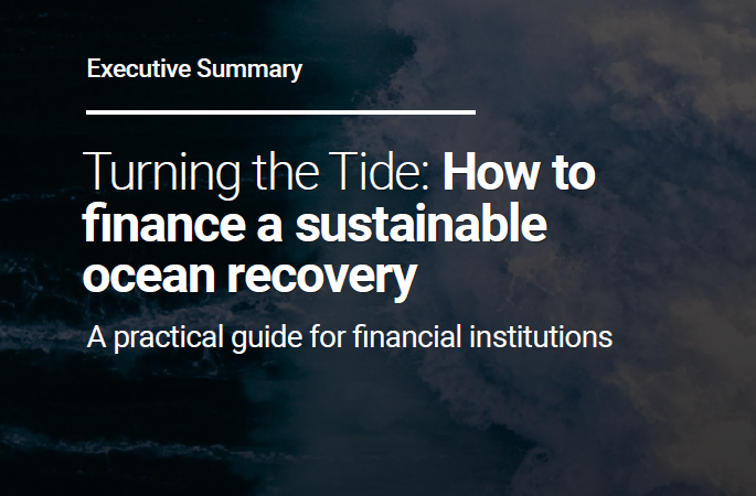 Turning the Tide: How to finance a sustainable ocean recovery